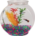 Plastic Fish Drum, 1/2 Gal. koller, craft, fish, bowl, plastic