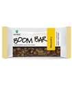 Boom Bar Recovery 10/box pet, releaf, relief, boom, bars, bar, recovery, hemp, cbd, dog